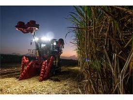 Case IH Austoft 8010 sugarcane harvester
