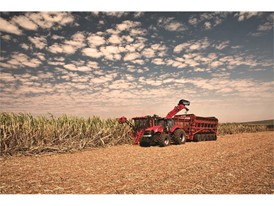 Case IH Austoft 8010 and 8810 sugarcane harvesters