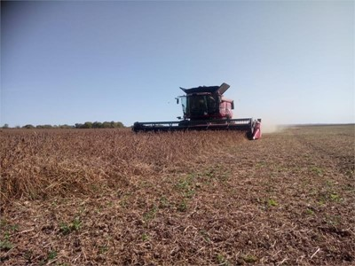 Eleven new Case IH Axial-Flow 6140 combines supported the harvesting campaign in Amur Region