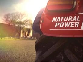 Stey Profi Natural Power