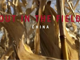 Case IH Out in the Field: China