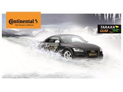 Continental trials first car tires with Taraxagum dandelion rubber tread