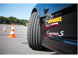 Winter Tires: Dry 20