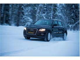 Winter Tires: Snow 24