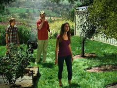 Enfermedad Mortal de las Plantas Amenaza a los Cítricos de California