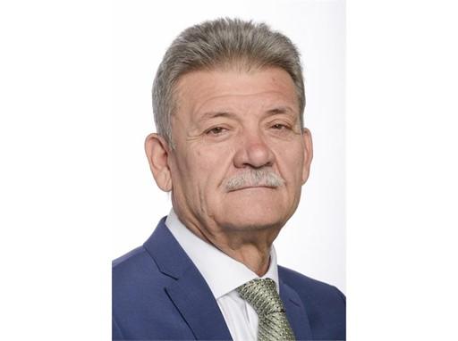 HAVA, Mircea-Gheorghe