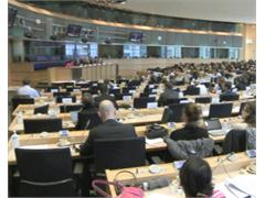 MEP Urges Need for Global Commitment to Slashing Greenhouse Gases and Sticking to EU's CO2-cutting Plan