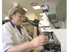 MEPs: Use EU Funding to Help Women Find and Keep Jobs