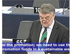 We Need More European Schemes for the Promotion of Renewable Energies, Says MEP