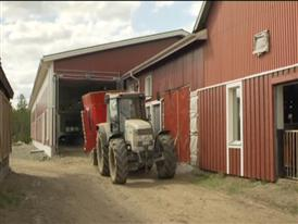 CAP reform offers stabile financing for farmers and stable food supply for citizens