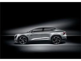 Audi Elaine 2