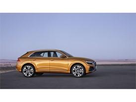Audi Q8 Medium