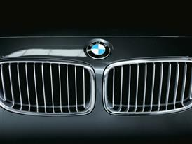 Morphing BMW Double Kidney