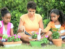 Climate and Your Spring Garden