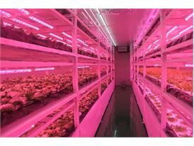 LED light-controlled plant factory interior