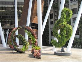 Nonwoven Fabric Garden