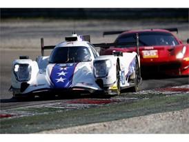 Dragonspeed Oreca & Spirit of Race Ferrari