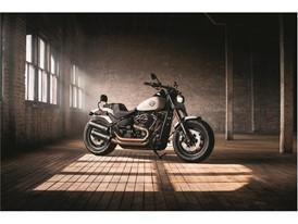 Harley-Davidson s pneumatikami Dunlop D429
