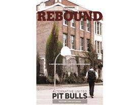 Alternative United Pit Bulls: Rebound