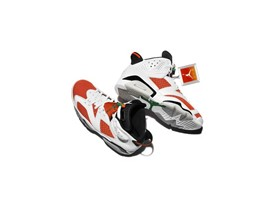 "Air Jordan VI ""Like Mike"""