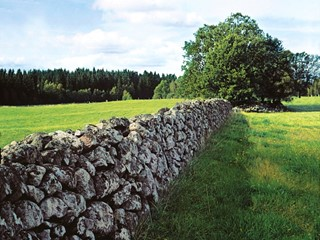 Stone wall in Småland