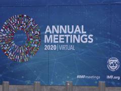 IMF / B-roll 2020 Virtual Annual Meetings