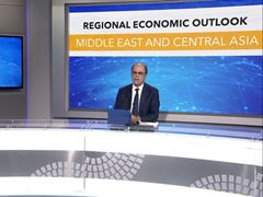 IMF / Middle East and Central Asia Press Briefing