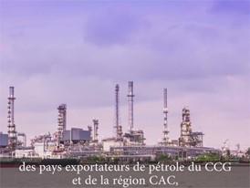 Comment les pays exportateurs de pétrole financent-ils leurs déficits?