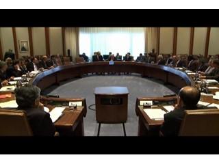 IMF Interiors