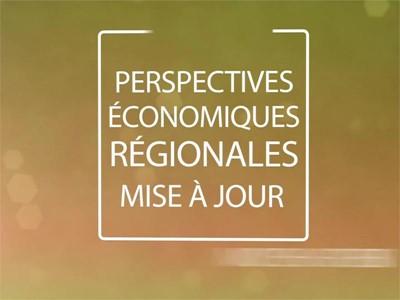 Moyen-Orient et Afrique du Nord: Les perspectives économiques régionales