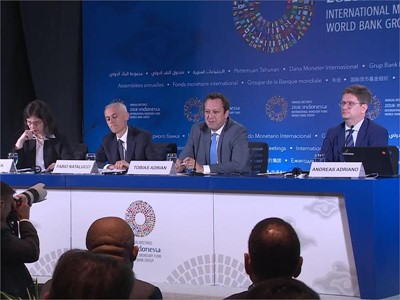 IMF: Financial Stability Risks Emerging