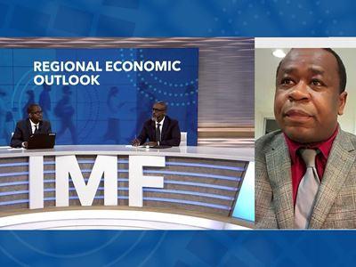 IMF / Sub-Saharan Africa October 2021 Regional Economic Outlook