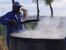 Biochar production project in Buffelsdraii, Durban  - South Africa (February 18-20, 2014)