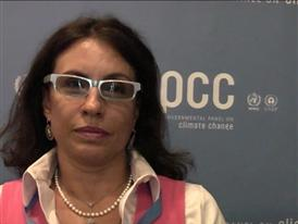 Professor- Federal University of Rio de Janeiro and IPCC Vice-Chair 1