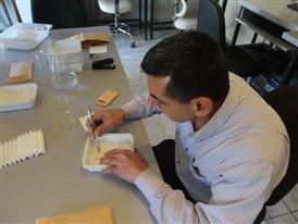Mr. Mohamad Hayyani- seed testing