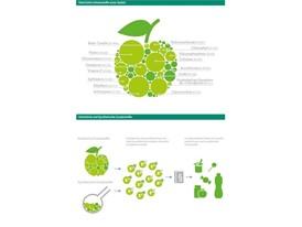 Natürliche Inhaltsstoffe und Zusatzstoffe