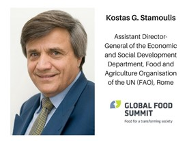 Kostas G. Stamoulis, Assistant Director-General of the Economic and Social Development Department, FAO, Rome