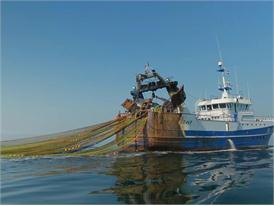 Fischtrawler