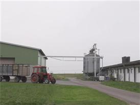 GGAB Agrarbetrieb Groß Grenze GmbH - Außenaufnahmen Schweineställe