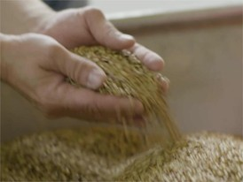 Commodities clip 02 malt
