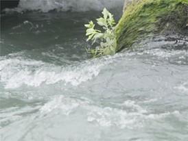 Rohstoffe Clip 1 / 1 (Wasser)