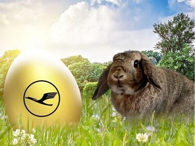 Lufthansa Osterüberraschung: Eier suchen und Tickets finden