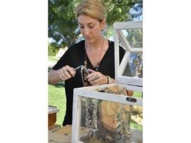Jeweler and artist Adrian Schwab