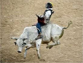 Mike Lee rides Milky Jones