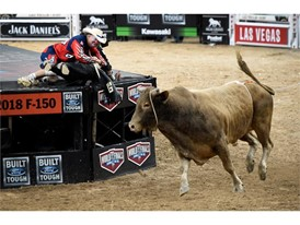 Bull fighter Flint Rasmussen pulls bull rider Guiherme Marchi on to the stage as Hedoo still runs free