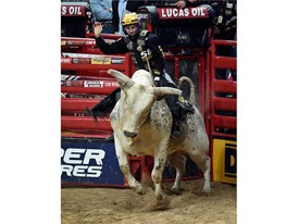 Jess Lockwood rides Lester Gillis during the final round at the PBR World Finals