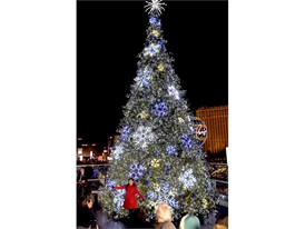Olympic Gold Medalist and Dancing with the Stars Winner Kristi Yamaguchi poses by the tree at The Cosmopolitan's Ice Rin