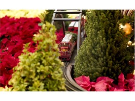 "The popular model train circles the Christmas tree in the Bellagio Conservatory and Botanical Garden ""Holiday Glamour"""