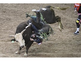 Jordan Hansen from Okotoks, Alberta, Canada, gets thrown from his bull