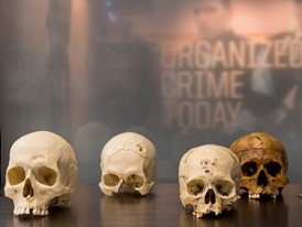 Human skulls welcomes guests to the Crime Lab as the Mob Museum